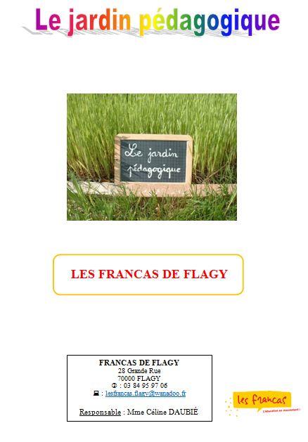flagy6