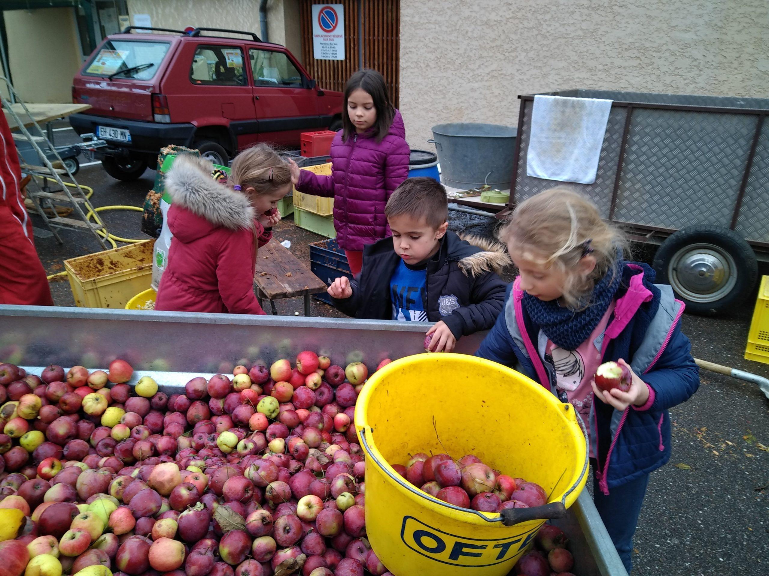 Atelier Jus de Pommes à Colombier